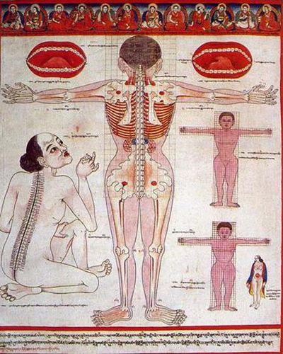Бадмаев-Тибетская медицина